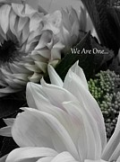 Sian Lindemann - We Are One