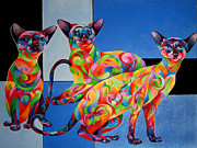 We Are Siamese If You Please Print by Sherry Shipley