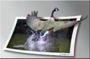 Honk Prints - We Have Liftoff - Use Red-Cyan 3D glasses Print by Brian Wallace