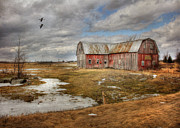 Old Barns Photo Prints - We Lived the Life Print by Lori Deiter