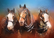 Clydesdale Posters - We Three Poster by Trudi Simmonds