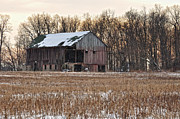 Old Barn Posters - Weary Winter Poster by Pamela Baker