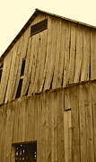 Farming Barns Prints - Weathered Barn I in sepia Print by JD Grimes