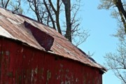 Metal Roofs Posters - Weathered Barn Roof- Fine Art Poster by KayeCee Spain