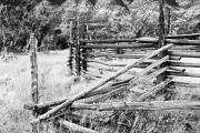 Ewing Prints - Weathered Fence Print by Larry Ricker