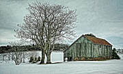 Wooden Barns Prints - Weathered Print by Heather Applegate