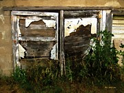 Shed Digital Art Posters - Weathered in Weeds Poster by RC DeWinter