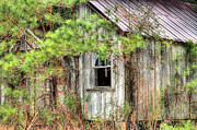 Weathered Houses Posters - Weathered Poster by JC Findley