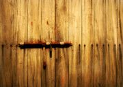 Vintage Iron Prints - Weathered Latch Print by Perry Webster