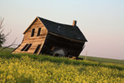 Abandoned Digital Art - Weathered old farm house in scenic Saskatchewan by Mark Duffy
