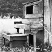 Pines Prints - Weathered Piano Print by Mike McGlothlen