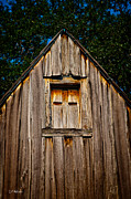 Barn Boards Prints - Weathered Structure Print by Christopher Holmes