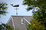 Weathervane Prints - Weathervane - Whale on roof Print by Wayne Sheeler