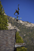 Weathervane Prints - Weathervane Print by Jay Hooker