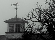 Weathervane Prints - Weathervane on the barn Print by Lois Lepisto
