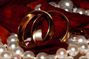Intimacy Photos - Wedding Bands And Rose Petals by Tracie Kaska