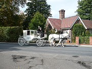 Nature Reserve Originals - Wedding Coach by John Chatterley