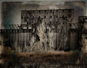 Abandoned Digital Art - Weeds by Gothicolors With Crows