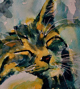 Watercolor Cat Paintings - Weeeeeee Sleepee by Paul Lovering