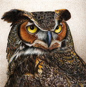 Great Horned Owl Framed Prints - Well...  Framed Print by Pat Erickson