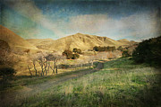 Golden Digital Art Prints - Well Walk These Hills Together Print by Laurie Search