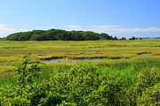 Wellfleet Prints - Wellfleet Bay Marshes Cape Cod Print by John Burk