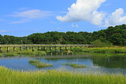 Cape Cod Massachusetts Framed Prints - Wellfleet Marsh Cape Cod Framed Print by John Burk