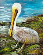 Sea Birds Paintings - Wellington by Sally Seago
