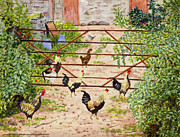 Walking Birds Originals - Welsh Farm Cockerels on Patrol by Edward McNaught-Davis