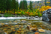 Stevens Prints - Wenatchee River Print by Dan Mihai