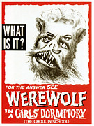 1960s Poster Art Posters - Werewolf In A Girls Dormitory, Aka Poster by Everett