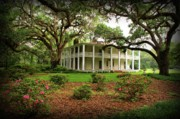 Florida State Prints - Wesley House Print by Sandy Keeton