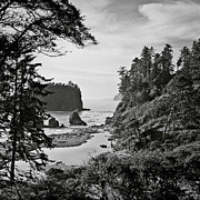 Olympic Peninsula Posters - West Coast Poster by Sbk_20d Pictures