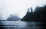 Reminiscent Prints - West Coast Scene 8  - Cyanotype Print by Steve Ohlsen