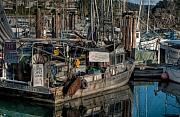 R J Ruppenthal Art - West Coast Shrimp Boat by R J Ruppenthal