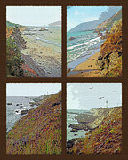 Northwest Landscape Mixed Media - West Coast Tetraptych by Steve Ohlsen
