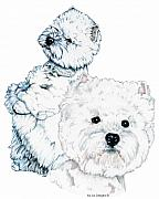 White Terrier Drawings - West Highland White Terriers by Kathleen Sepulveda