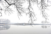 Lake Photography Framed Prints - West Lake In Winter With Broken Bridge Framed Print by Y. Peter Li Photography (www.flickr.com/photos/ypeterli)
