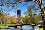 Pittsburgh Framed Prints - West Park Framed Print by Emmanuel Panagiotakis