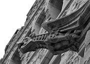 Cadet Framed Prints - West Point Gargoyle Framed Print by Dan McManus