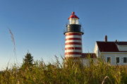 Lubec Prints - West Quoddy Head Light Print by John Greim