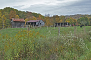 Virginia Ruins Photos - West Virginia Barn 3212 by Michael Peychich