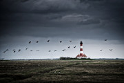 Flock Of Bird Art - Westerhever Lighthouse by Siegfried Haasch