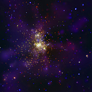 H Ii Regions Prints - Westerlund 2, A Young Star Cluster Print by Stocktrek Images