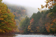 Westfield River Framed Prints - Westfield River Autumn Fog Framed Print by John Burk