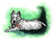 Westie Pup Posters - Westie with Soother Poster by Patrice Clarkson