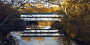 Indiana Autumn Digital Art Prints - Westport Covered Bridge - D007831a Print by Daniel Dempster