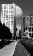 View. Chicago Photos - Westward...the wind by David Bearden
