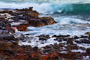 Poipu Prints - Wet Rocks Print by Kelley King
