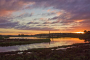 Murray Prints - Wetland Sunrise Print by Mark Richards